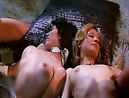 Vintage Orgy In The 70S