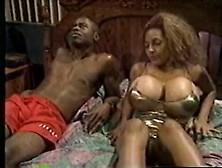 Vintage (African-American)-Sean Michaels & Persia