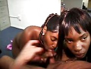 Horny Ebony Cock Suckers Give A Hot Double Blowjob