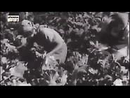 Madchen Fur Hitler