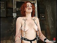 Naturally Busty Redhead Venus May Gets Tied And Abused By Domina