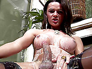 Hot Ass Shemale In Stocking Seductively Masturbating