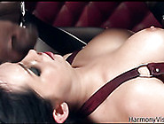 Raunchy Slut With Big Boobs Is Fucked Hard In Her Ass In Hardcor