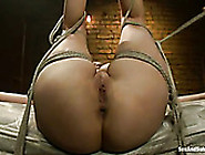 Extremely Busty Bondageable Blondie Julia Anns Is Analfucked Rea