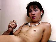 Untiring Tranny Pleasuring Her Rocklike Pink Schlong