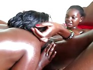 Oiled Black Lesbians In Action