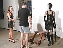 Random Photo Gallery What is a bull in bdsm
