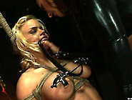Tied Up Blond Sex Slave With Nice Tits Has To Suck A Dildo Like