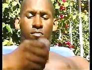 Black Gay Cock Wanking Under The Sun