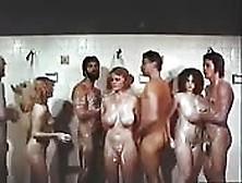 Orgia Vintage Nella Doccia