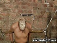 Gay Porno Bondage Dvd Drained Of Cum Through