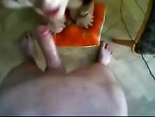 Sexy Busty Girl In Glasses Blowjob In Webcam. My X-Mas Webcam: 4X