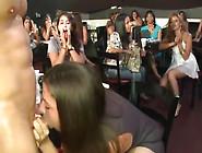 Chupando Rola No Clube Das Mulheres Deliciosamente Longe Dos Mar