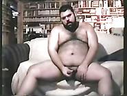 Hairy Chubby Bear Jo9