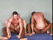 Tops Und Bottoms