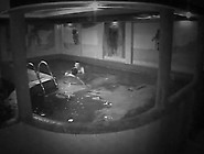 A Male Bans His Sensuous Female In The Swimming Pool