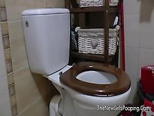 Toilet Pooping Lady