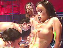 Three Adoring Friends Are Ready For All Sorts Of Dildo Riding Ga
