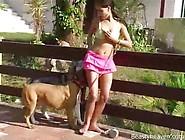 Zoofilia Videos Brasileira Safada Dando A Buceta Pro Cachorro Fo