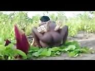 Bangla -Vilgl-Fk Desisexblog. Net