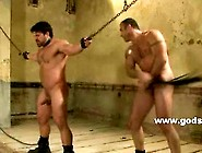 Hot Horny Hunks Learning Submission Sex In This Bondage Sex Scen
