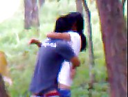 Indian Couple Is Doing It In A Local Forest,  Although Someone Mi