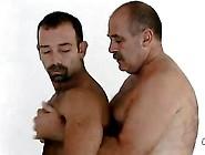 Gay Bears Ass Pounding