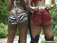 Horny Black Big Apple Bottom Hookers Getting Their Pussy Pounded