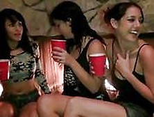 Three Horny Sluts Got Drunk And Pounded