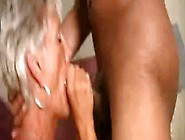 Porno Movies Granny Gone Wild
