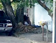 Flagra Casal Se Pegando Na Rua Em Maceio