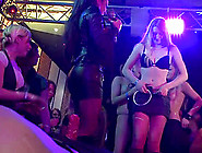 Massive Group Disco-Fuck In The Club Where Horny Girls Show Thei