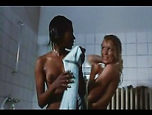 Elucidated the ferdinand softcore 1972
