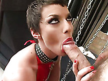 Hardcore Fanatic Chick Eliska Cross Stretches The Mouth Of Her G