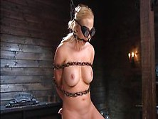 Bound Blonde In Doggy Pussy Toyed (Paisley Porter)