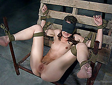 Big Booty Doll Anal Getting Inserted With Toys In Bdsm Torture