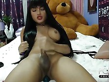 Cute Ladyboy Jerks And Cums Online