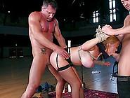 Anal BDSM con la apretada Krissy Lynn