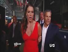Stephanie mcmahon entrega el culo a sus fans - 4 2
