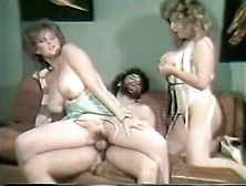 Crazy Pornstar In Amazing Straight,  Vintage Adult Video