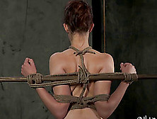 Slave Getting Drilled With Toys In Bdsm Torture Porn