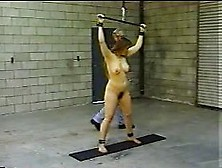 julia horsewhipped