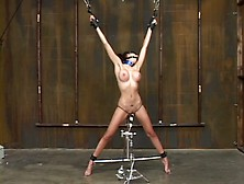 Standing Spread On Didlo - Whipped,  Vibed